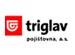 Povinné ručení Triglav